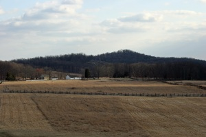 View south toward the Round Tops from the PA Memorial